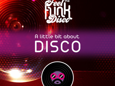 DISCO - A Little Bit About!