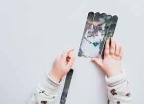Photo Popsicle Puzzles - A Personalised Craft | Melbourne Family Photographer