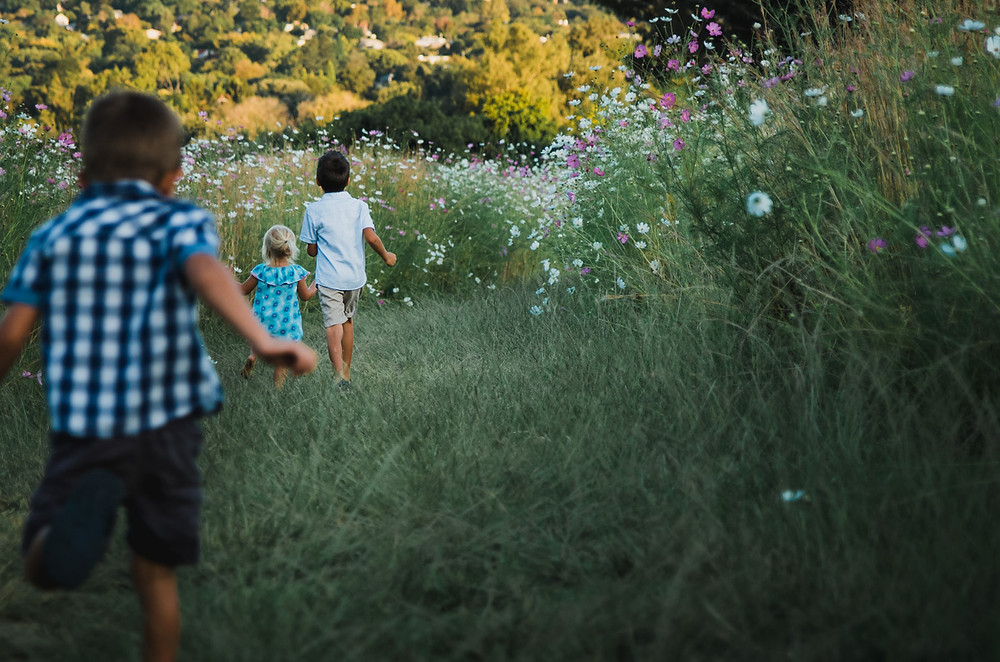 children playing in field of flowers cosmos - outdoor lifestyle photography photoshoot melbourne