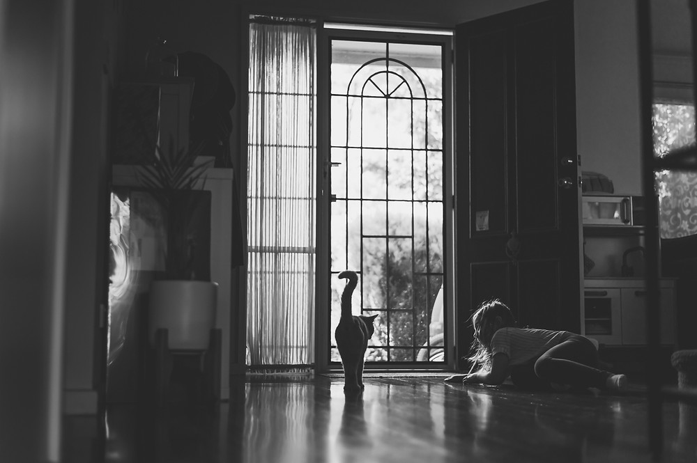 black and white image of a cat and girl at a door. the subjects are silhouetted in the light