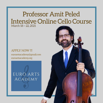 Professor Amit Peled