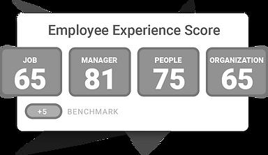 Employee-XP-Score_edited.png