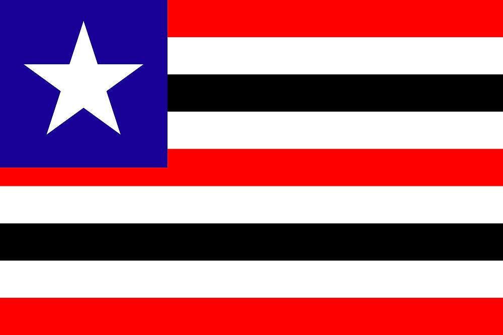 Gerando Código CSC (Código de Segurança do Contribuinte) em Maranhão