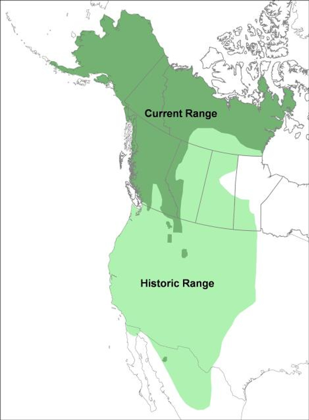 Grizzly bear range contracted since the late 1800s due mainly to human settlement.