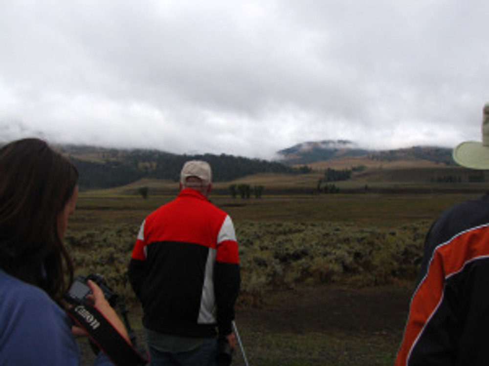 The open plateaus of Yellowstone make wildlife viewing completely different. Here we are watching wolves about 1.5Km away through spotting scopes.