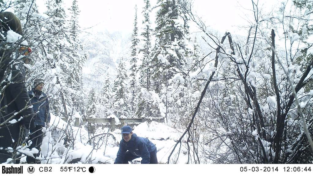 Playing around in the snow for remote camera volunteer training... it's not all fun and game out there, but it's a lot of that!