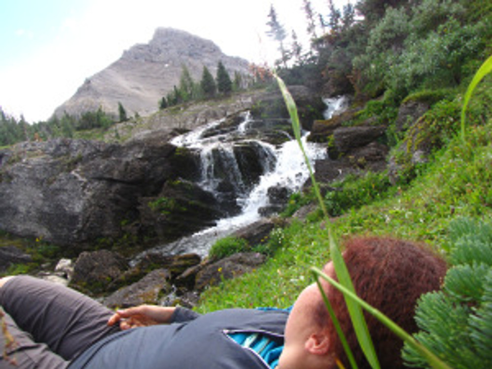 Sometimes my relationship with wilderness involves naps in the grass under the sunshine.