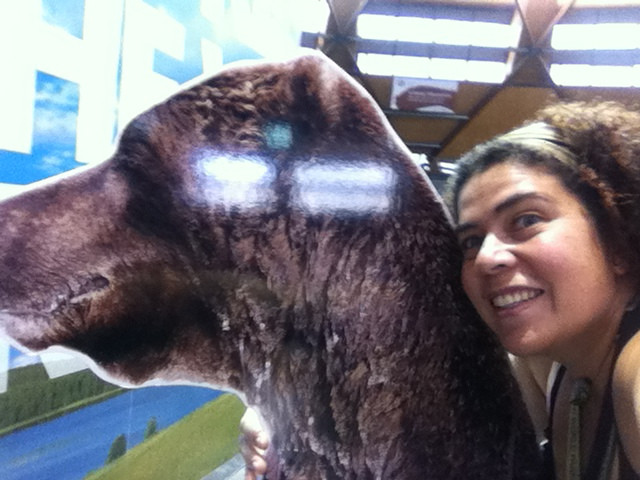 Maybe this is the closest I'll get to snuggling a bear, but I'm doing it in my mind all the time!