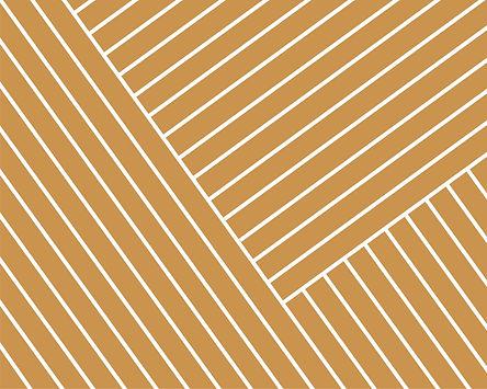 1985 Muster Triibud Mustard_edited.jpg