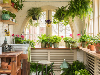 Bring Your Garden Indoors!