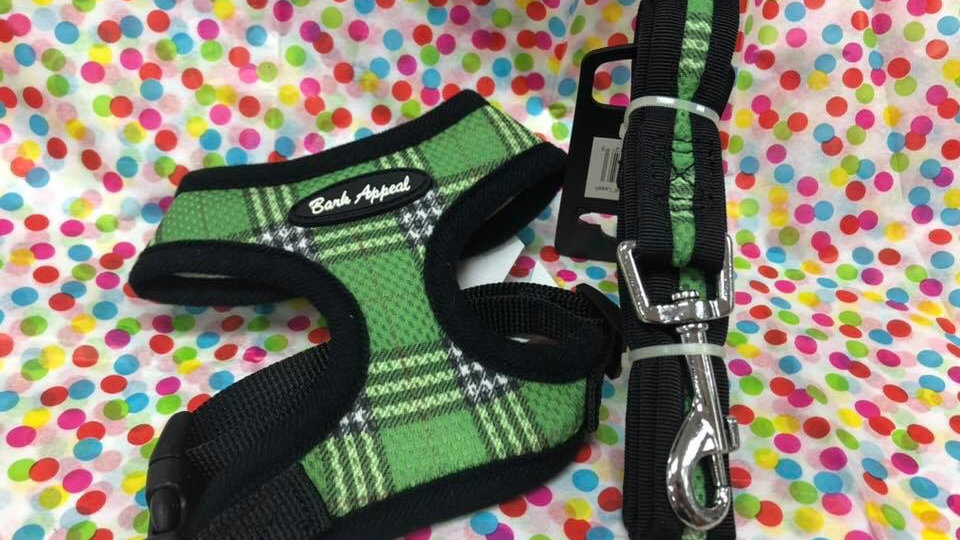 XS Harness and Leash set