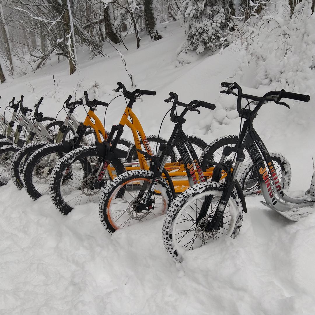 Dans la neige/ In the snow