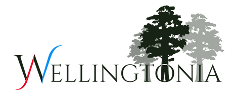 Wellingtonia logo