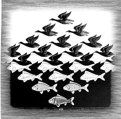 fish birds escher right.jpg