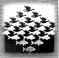 fish birds escher.jpg