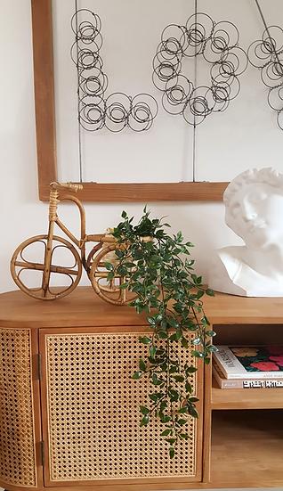 Tricycle porte-plante