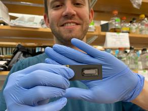 New CRISPR-based technology could revolutionize antibody-based medical diagnostics