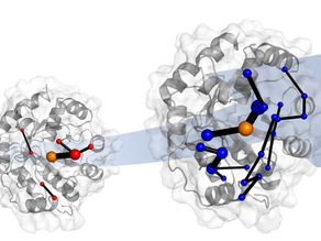Understanding enzyme evolution paves the way for green chemistry