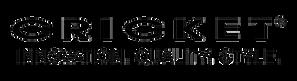 Cricket Trans logo.png