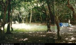 2013(목포대특강)만남을 찾아서-131018_페이지_045.jpg