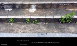 2013(목포대특강)만남을 찾아서-131018_페이지_138.jpg