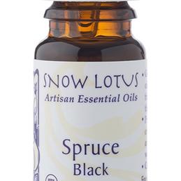 Organic Spruce Essential Oil