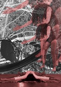 Corpo - Casa – Metamorfose, 2020