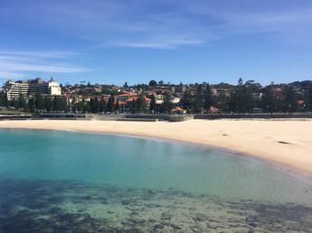 Sydney em repouso