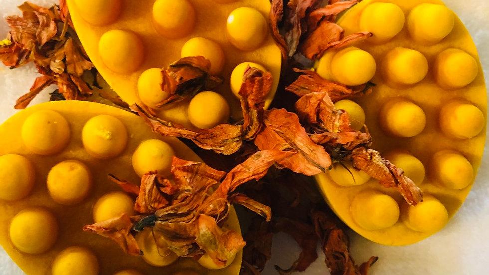 Apricot Massage Bars