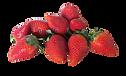 fruit-2489367_640.png