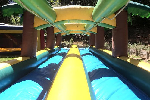 WATER SLIDE w/Dual 30' Lanes (Palm Topped)