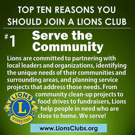 #1 Reason to be a Lion.jpg