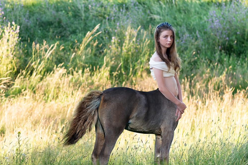 centaur foal filly