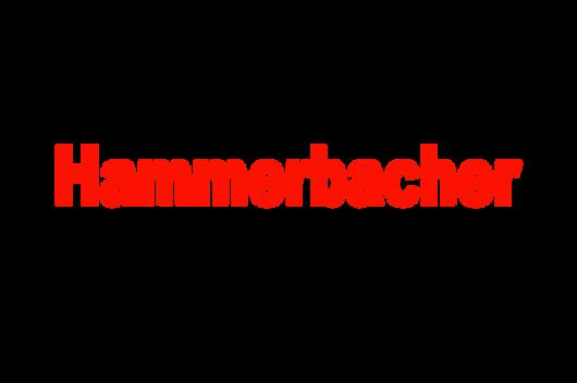hammerbacher.png