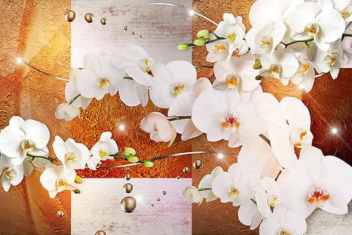 3d фотообои - Роскошь орхидей