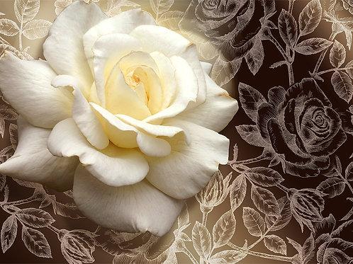 3d фотообои - Королева цветов