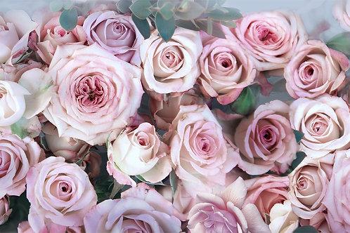 3d фотообои - Розы шебби