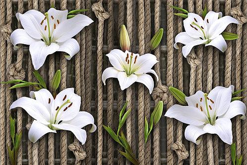 Фотообои на стену - Лилии на веревках
