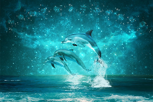 """Фотообои или фреска """"Дельфины"""""""