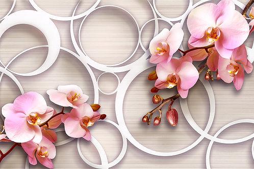 3д фотообои - Орхидеи и круги
