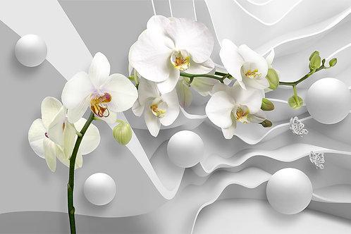3d фотообои с белыми орхидеями