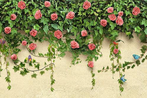 Дизайнерские фотообои на стену - Розы на стене