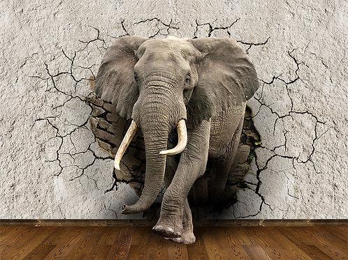 3d фотообои - Слон из стены