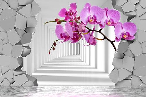 3d фотообои на стену - Орхидеи с перспективой