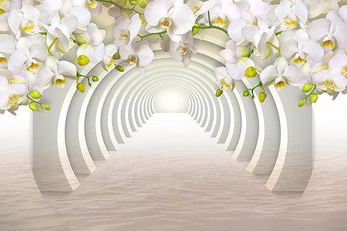 3d фотообои  - Арки с белыми орхидеями