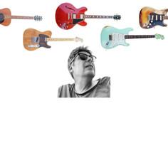 dani's guitars