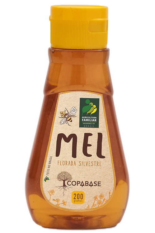 Mel de Abelha 200g - COPABASE