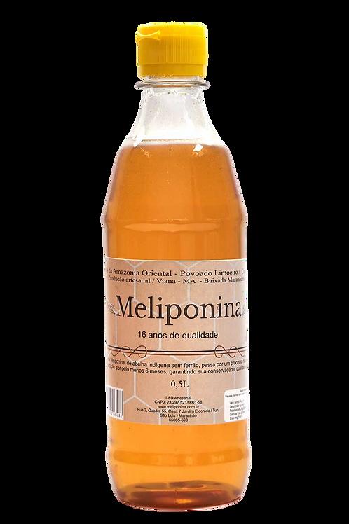 Mel de Abelha Tiúba Povoado limoeiro 500ml - MELIPONINA