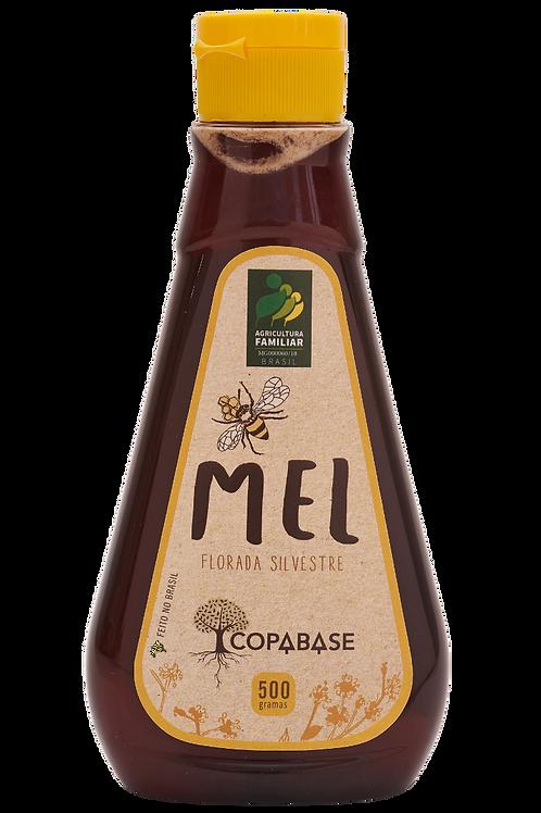 Mel de Abelha 500g - COPABASE