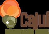 Cajui_-_Logo.png